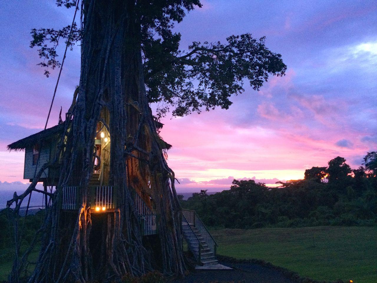 Samoa_Treehouse